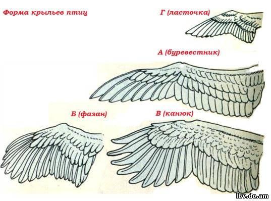Ангелочек из бисера мастер класс с пошаговым